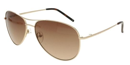 Carter TB 1166 Men's Sunglasses Brown / Gold