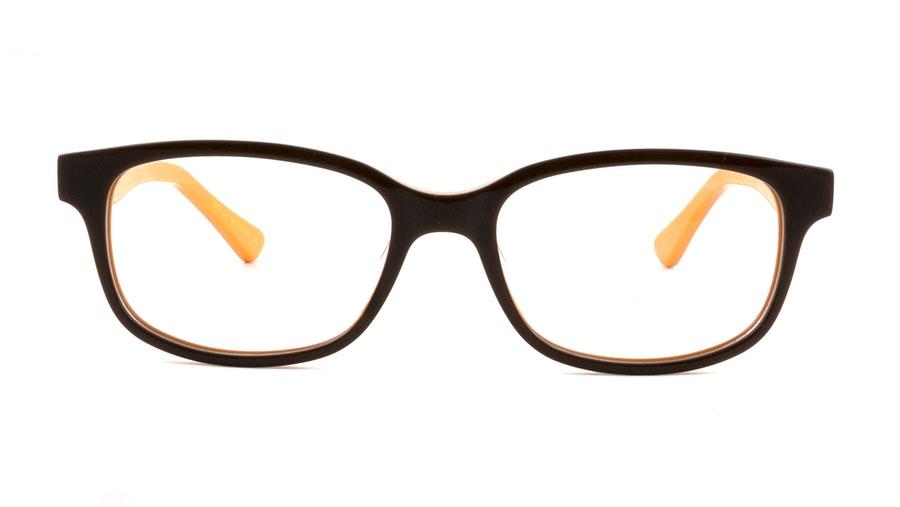 Roald Dahl Fantastic Mr. Fox RD07 (C2) Children's Glasses Orange