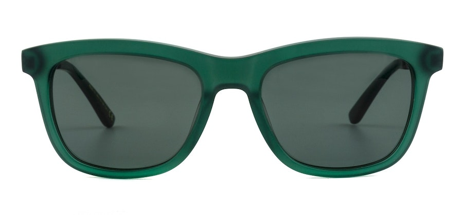 Roald Dahl Charlie and the Chocolate Factory RD 016 Children's Sunglasses Grey / Green