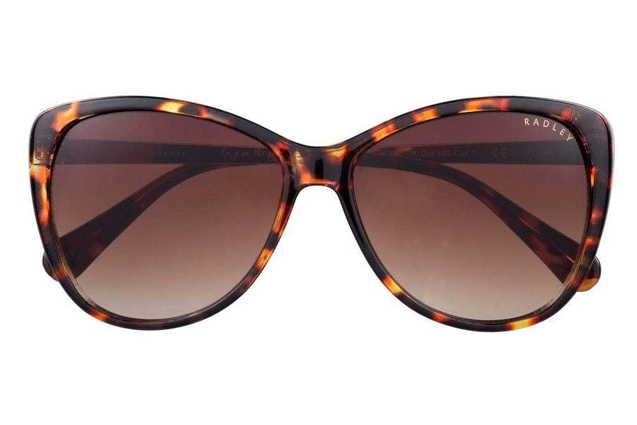 Radley Gwyneth (102) Sunglasses Brown / Brown