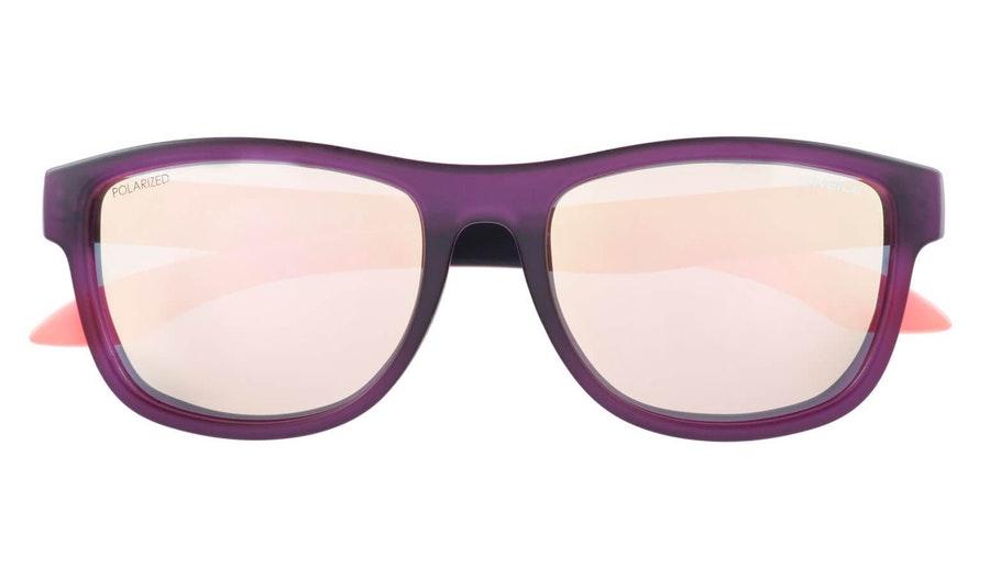 O'Neill Coast 164P (164P) Sunglasses Gold / Purple