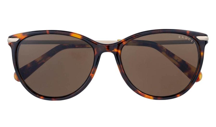 Radley Tassia Women's Sunglasses Brown / Havana