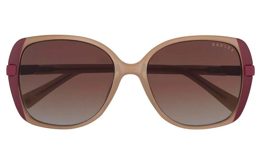 Radley Morwenna Women's Sunglasses Brown / Brown