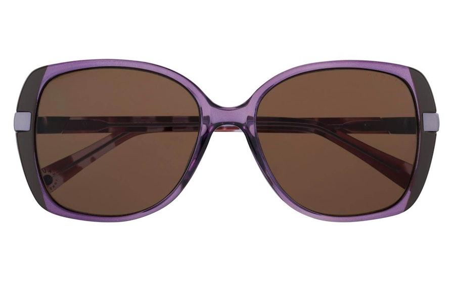 Radley Morwenna Women's Sunglasses Brown / Purple