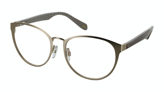 OK 036 Women's Glasses Transparent / Gold