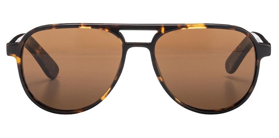 Spitfire Electro (Tort) Sunglasses Brown / Tortoise Shell