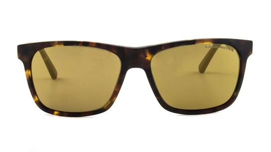 Oxwich Men's Sunglasses Bronze / Tortoise Shell