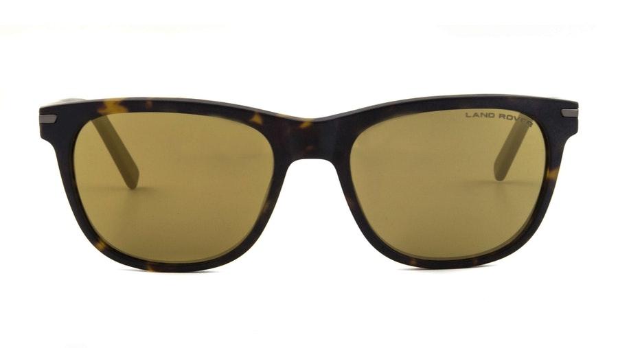 Land Rover Snowdon Men's Sunglasses Bronze/Tortoise Shell