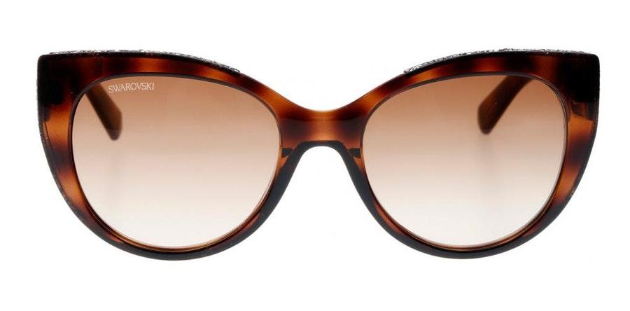 Swarovski SK 0202 Women's Sunglasses Brown/Tortoise Shell
