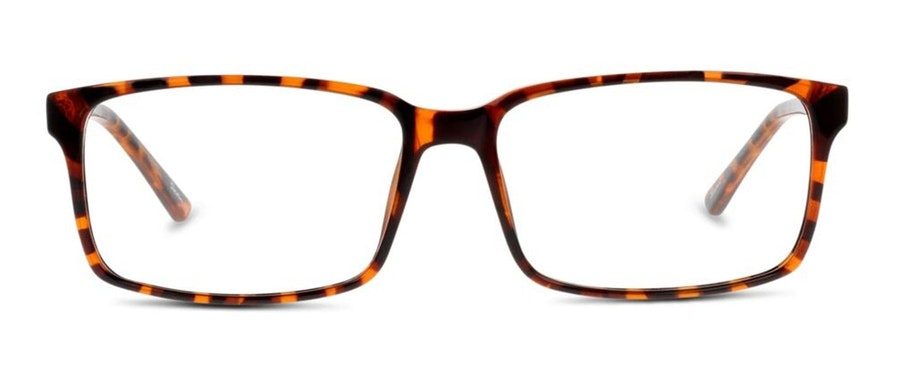 Seen SN AM21 (Large) Men's Glasses Tortoise Shell