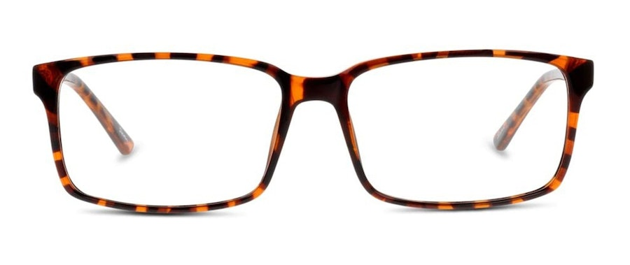 Seen SN AM21 (Large) Men's Glasses Tortoise Shell