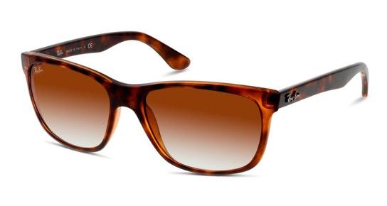 RB 4181 (710/51) Sunglasses Brown / Tortoise Shell