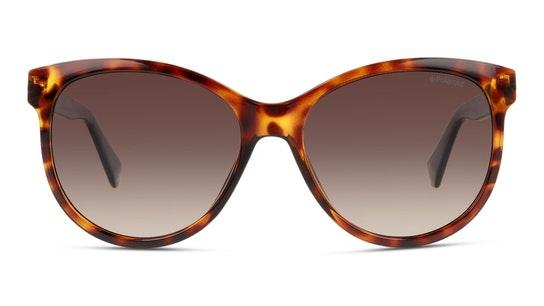 PLD 4079/S Women's Sunglasses Brown / Tortoise Shell