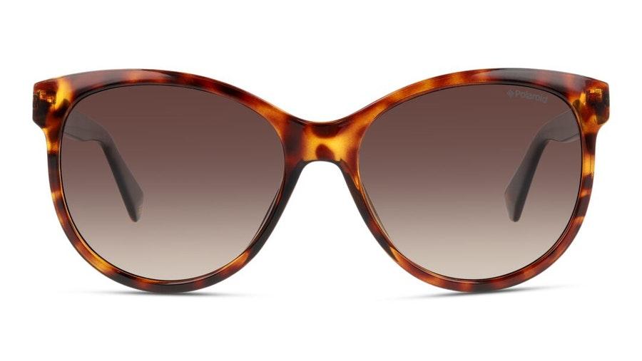 Polaroid PLD 4079/S Women's Sunglasses Brown / Tortoise Shell