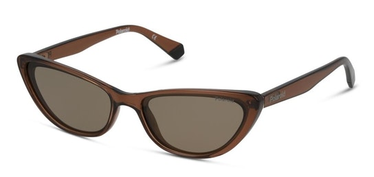 PLD 6142/S Women's Sunglasses Brown / Brown