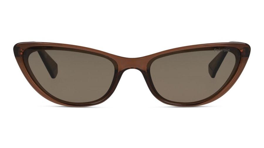 Polaroid PLD 6142/S (09Q) Sunglasses Brown / Brown