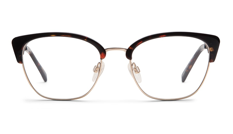 Barbour Lumley (B2) Glasses Tortoise Shell