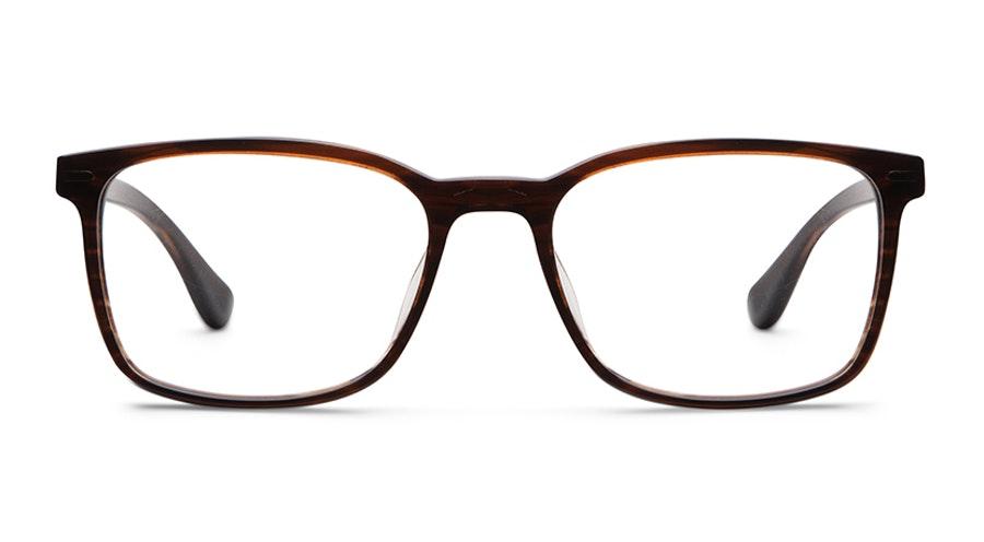 Barbour BA 2075 (C1) Glasses Tortoise Shell