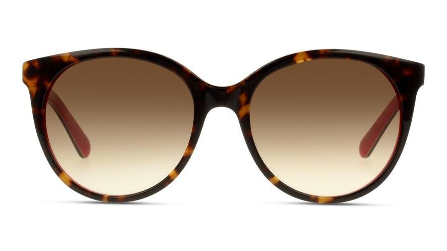 Kate Spade Amaya Women's Sunglasses Brown / Tortoise Shell