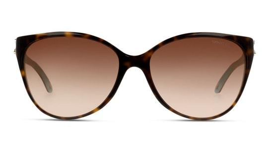 TF 4089B Women's Sunglasses Brown / Tortoise Shell