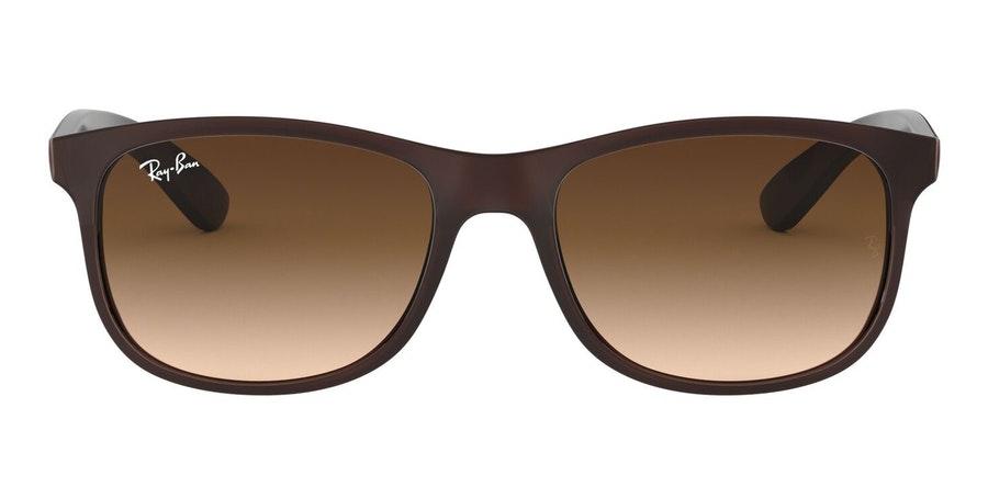 Ray-Ban Andy RB 4202 (607313) Sunglasses Brown / Brown