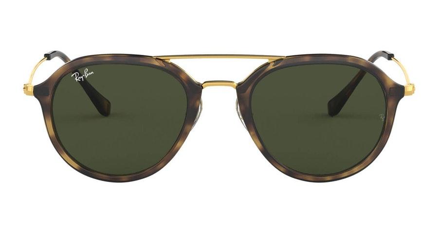 Ray-Ban RB 4253 Men's Sunglasses Green / Tortoise Shell