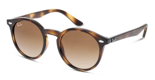RJ 9064S Children's Sunglasses Brown / Tortoise Shell