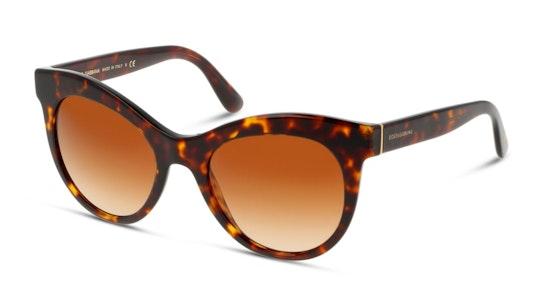 DG 4311 Women's Sunglasses Brown / Tortoise Shell