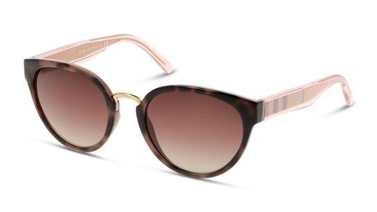 BE 4249 Women's Sunglasses Brown / Brown