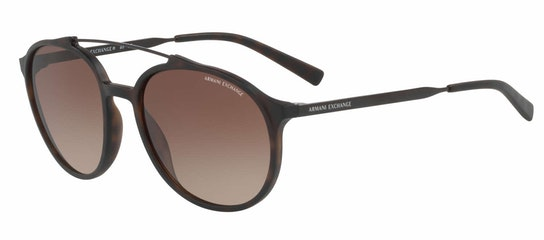 AX 4069S Unisex Sunglasses Brown / Tortoise Shell