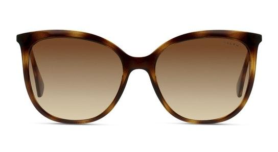 RA 5248 (500313) Sunglasses Brown / Tortoise Shell