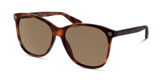 GG 0024S (002) Sunglasses Brown / Tortoise Shell
