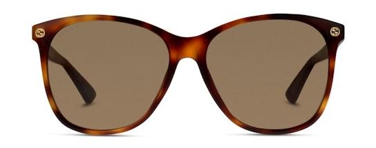 GG 0024S Women's Sunglasses Brown / Tortoise Shell