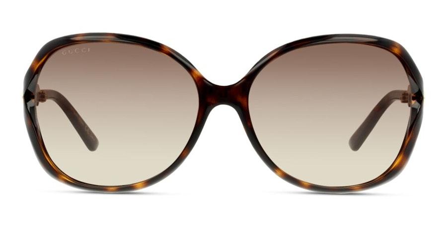 Gucci GG 0076S (003) Sunglasses Brown / Tortoise Shell