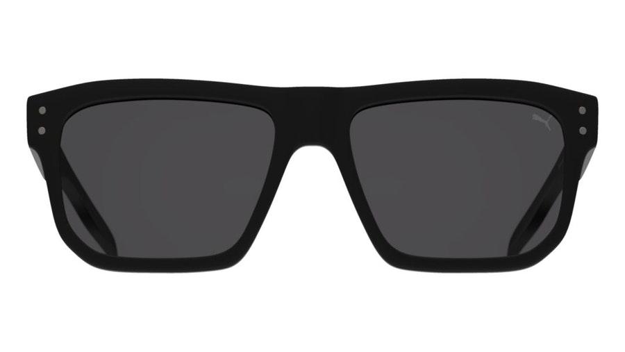Puma PU 0246S (001) Sunglasses Grey / Black