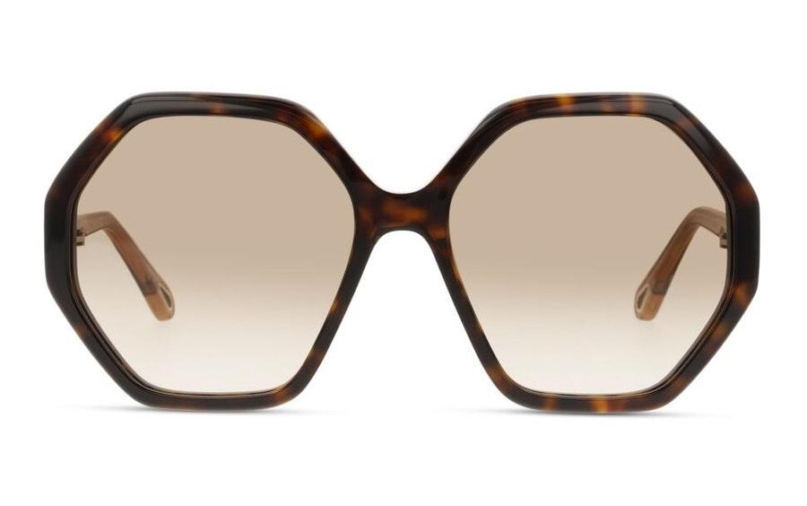 Chloe Esther CH 0008S Women's Sunglasses Brown/Tortoise Shell
