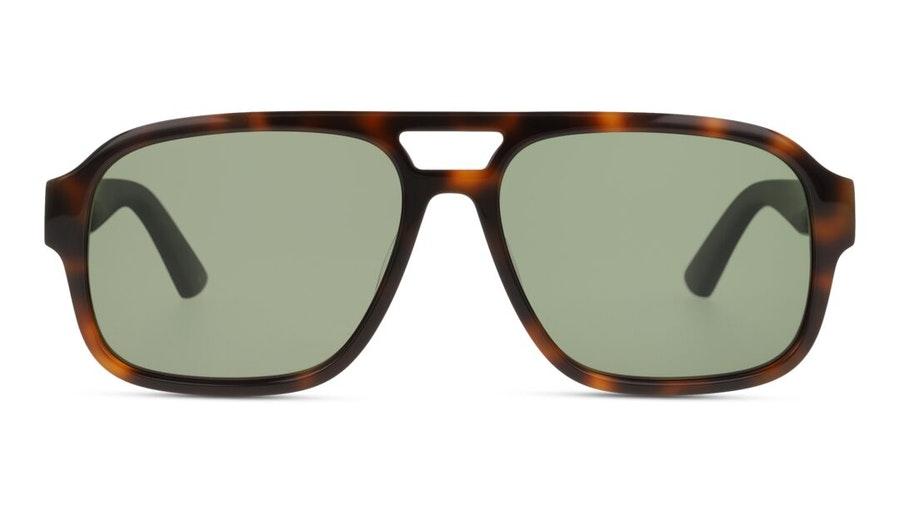 Gucci GG 0925S (002) Sunglasses Green / Green