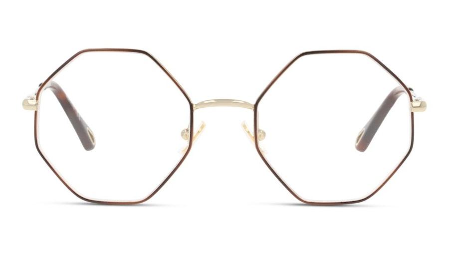 Chloe CH 0022O (007) Glasses Tortoise Shell