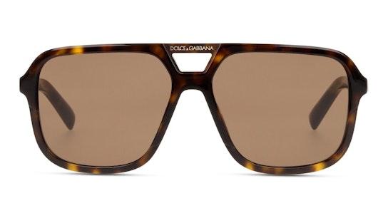 DG 4354 Men's Sunglasses Brown / Tortoise Shell
