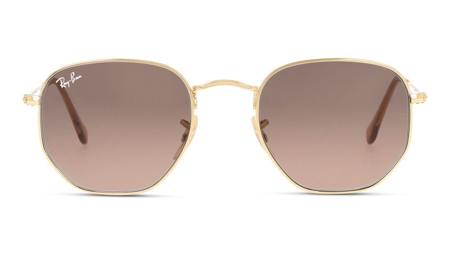 Ray-Ban Hexagonal RB 3548N Unisex Sunglasses Dark Brown / Gold