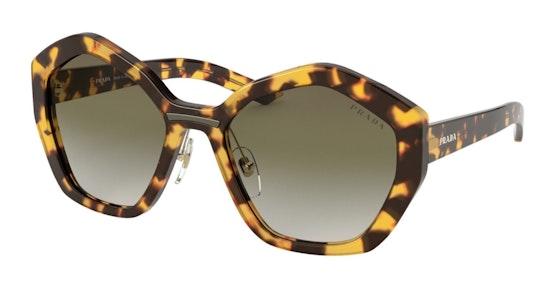 PR 08XS Women's Sunglasses Green / Tortoise Shell