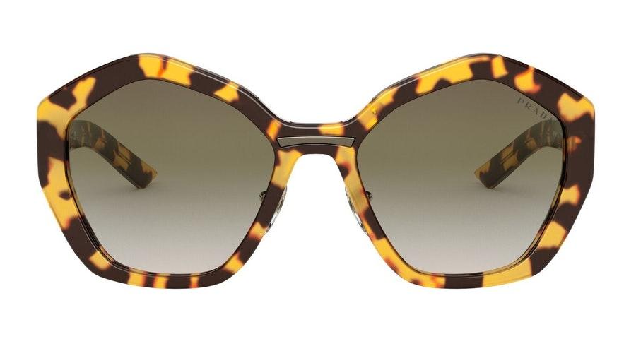 Prada PR 08XS (7S05O2) Sunglasses Green / Tortoise Shell