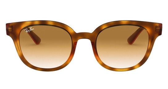 RB 4324 (647551) Sunglasses Brown / Tortoise Shell