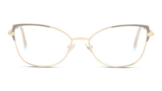 TF 1136 Glasses Transparent / Silver
