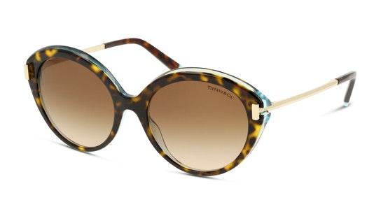 TF 4167 Women's Sunglasses Brown / Havana