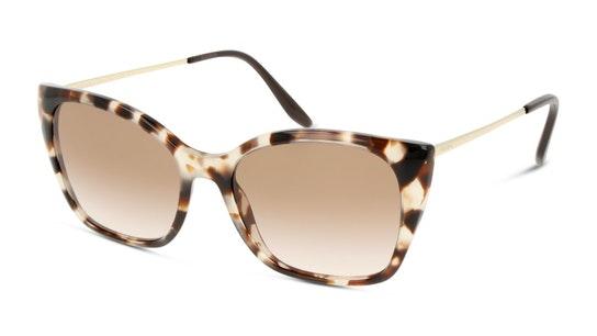 PR 12XS Women's Sunglasses Brown / Havana