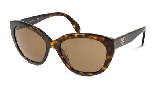 PR 16XS Women's Sunglasses Brown / Havana