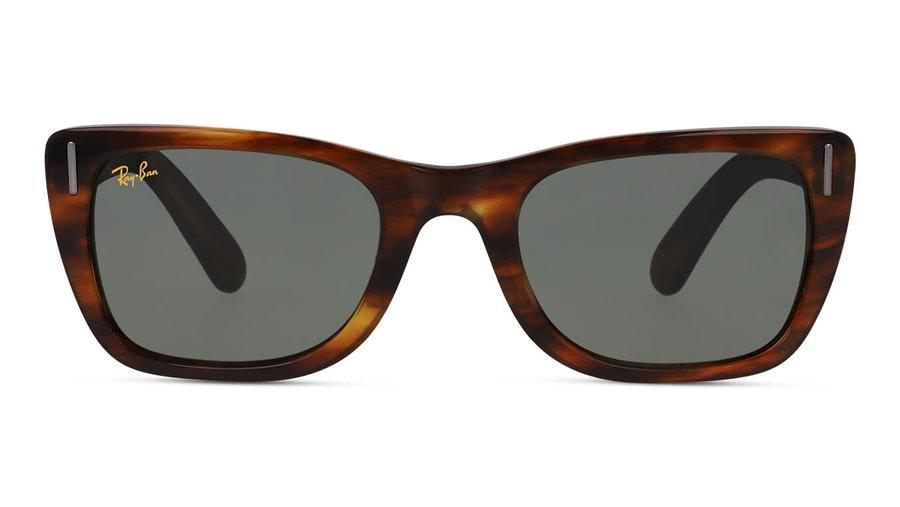 Ray-Ban Caribbean Legend RB 2248 Men's Sunglasses Green/Tortoise Shell