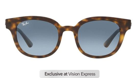 RB 4324 Unisex Sunglasses Blue / Havana