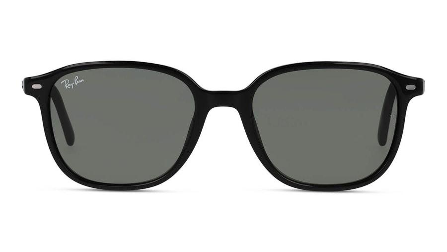 Ray-Ban Leonard RB 2193 (901/31) Sunglasses Green / Black